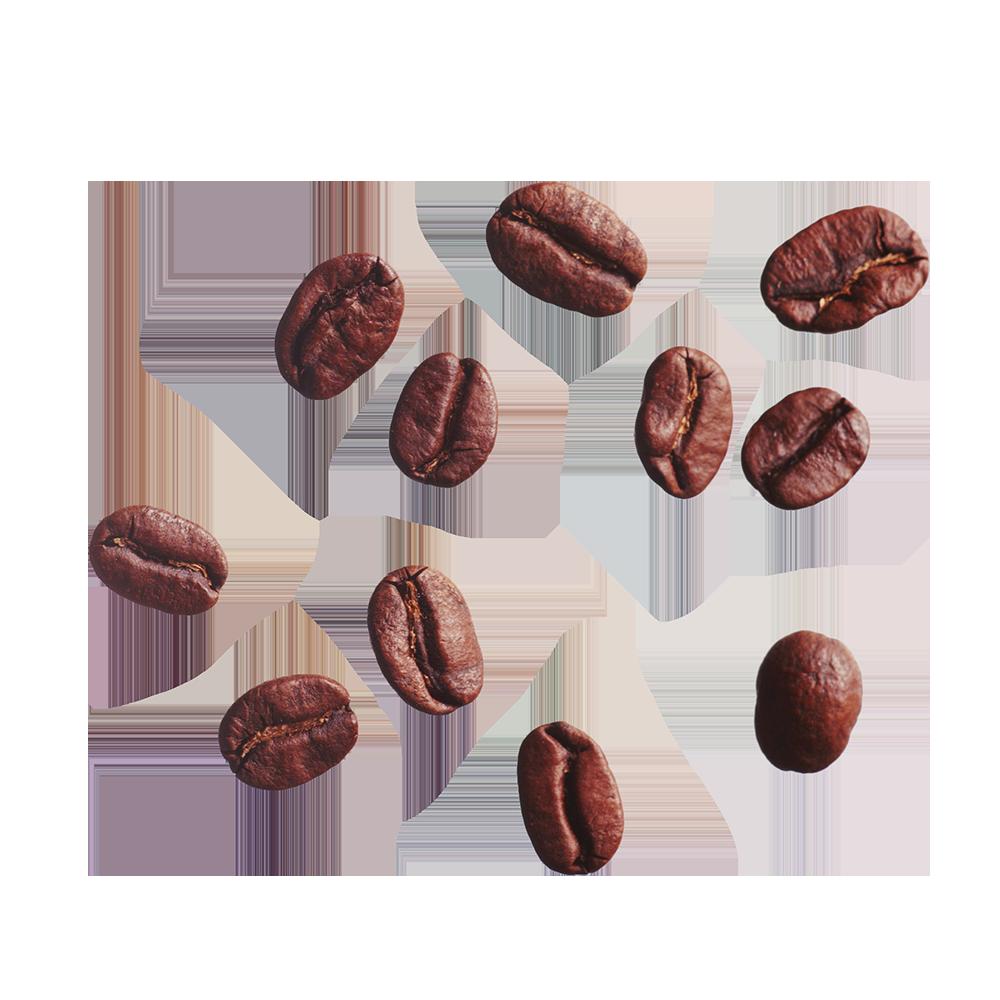 FAVPNG_coffee-bean-cafe-clip-art_Fq9VyaCs